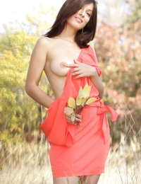Delightful dark haired chick with lovely breasts taking off clothes outdoor on the nature.