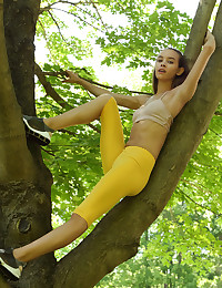FREE CLIMBER with Charity Crawford - ALS Scan photo #1
